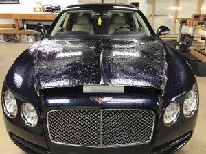 Bentley Clear Bra1